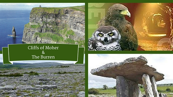 Cliffs of Moher & The Burren |Customized Tours Ireland