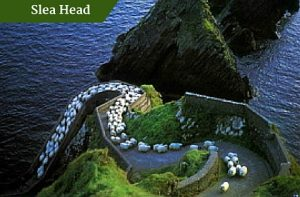 Slea Head | Executive Tours Ireland | Honeymoon Tours of Ireland