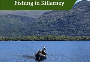 Fishing in Killarney