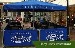 Fishy Fishy Restaurant | Private Driver Customised Tours Ireland