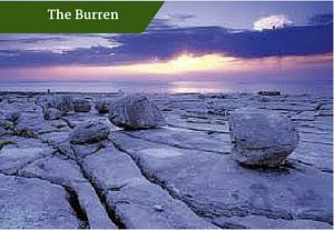 The Burren | Personal Chauffeur Ireland