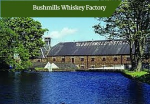 Bushmills Whiskey Factory -Private Guided Tours of Ireland