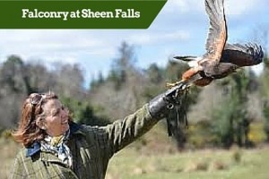 Falconry at Sheen Falls ?Customized Golf Packages Ireland