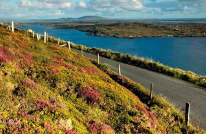 Sky-Road-Clifden | Private Escorted Tours of Ireland