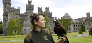 Falconry Dromoland Castle | Deluxe Tours Ireland
