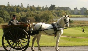 dromoland castle pony ride | Ireland Private Guided Tours