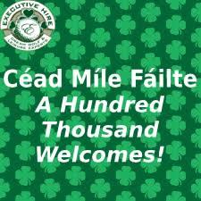 Chauffeur Tours Ireland